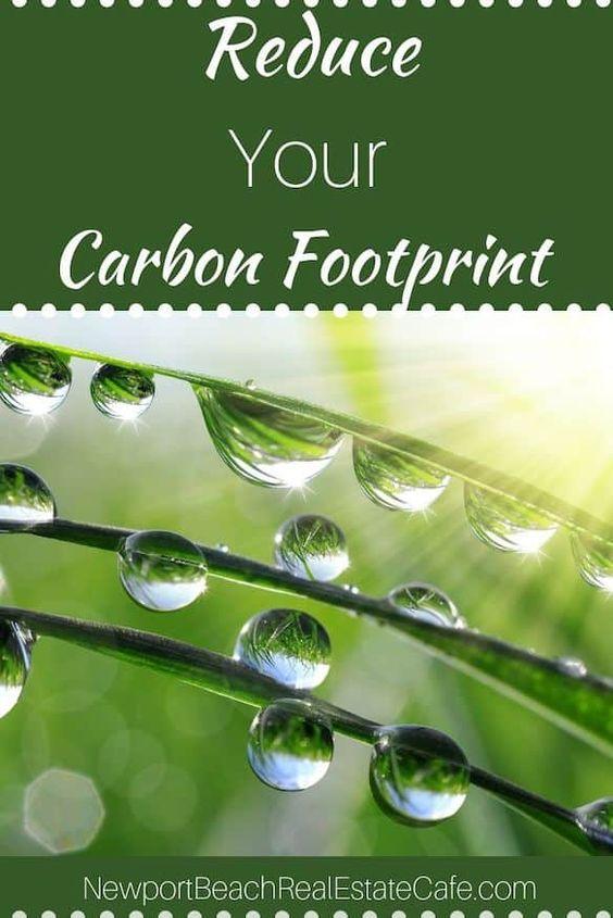 Ways To Reduce Your Carbon Footprint Carbon Footprint Footprint