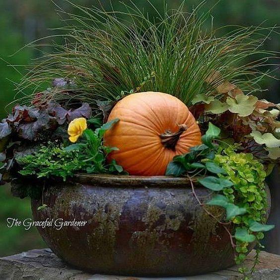 Outdoor Fall Decor Ideas. Decorating Your Garden With Pumpkins. #FallDecor Via Home Talk.