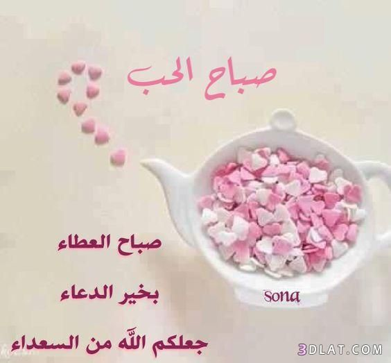 اجمل رسائل وصور الصباح 2020 مسجات دعاء صور صباح الخير حبيبيتي 2020 مسجات صباحيه رائعه Beautiful Rose Flowers Beautiful Morning Good Morning