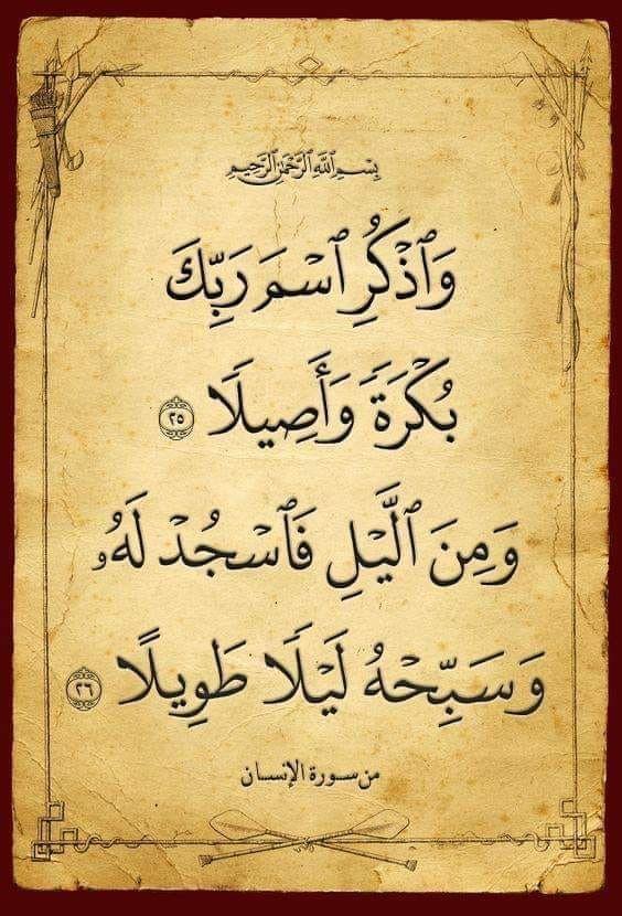 Pin By الأثر الجميل On آيات من القرآن الكريم Quran Holy Quran Prayer For The Day