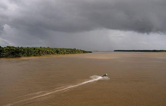 EL DELTA DEL RIO ORINOCO VENEZUELA.