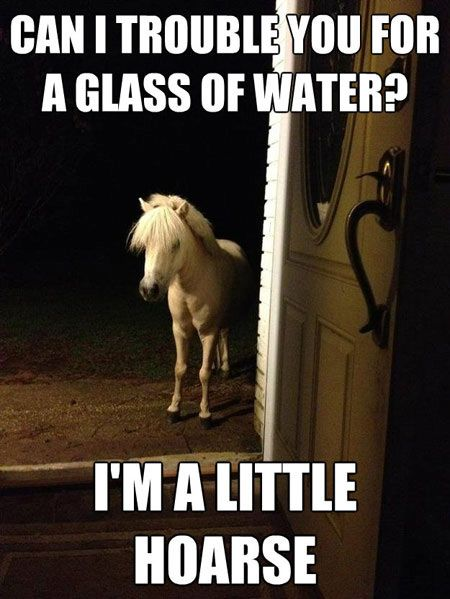 A little hoarse...