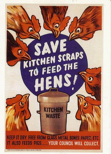 feed the girls scraps turn waste into eggs or meat, with chickens and pigs. someday...