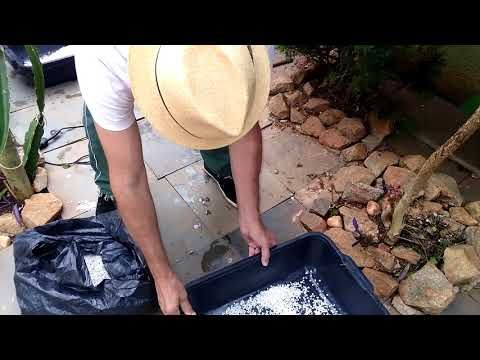 Youtube Caixa De Areia Gatos Pedra Aquario