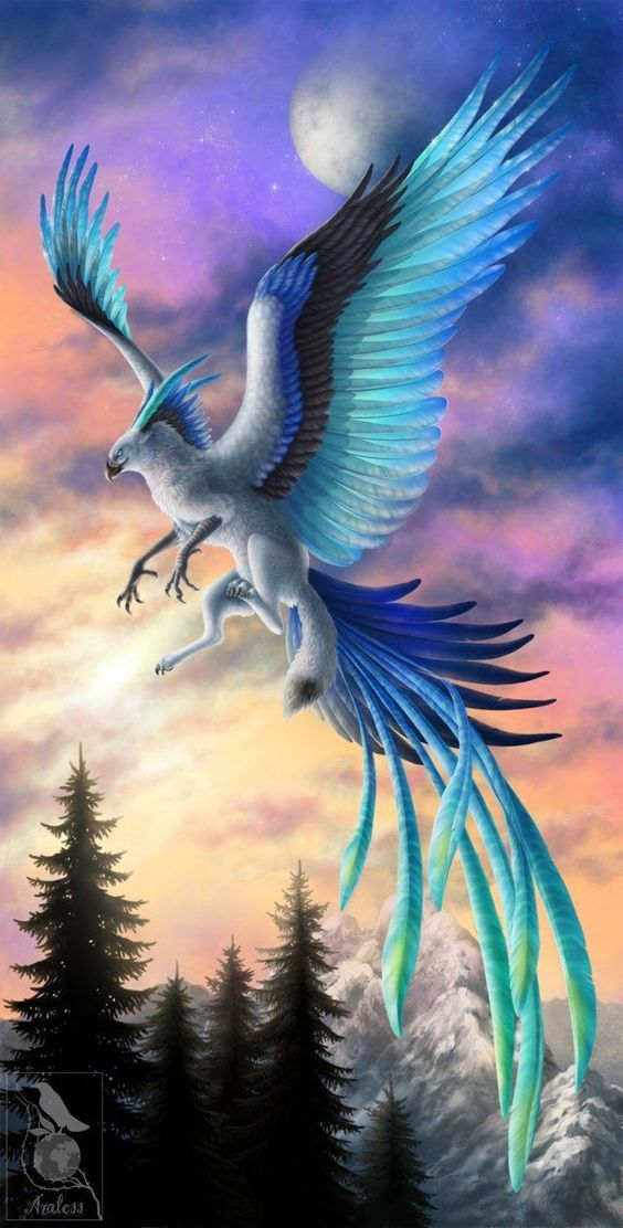 Wings of Ice by *Araless - a beautiful type of griffin or gryphon #Griffin #Gryphon #Fantasy