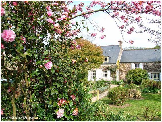 Maison jacques pr vert omonville la petite manche - La petite maison normandie ...