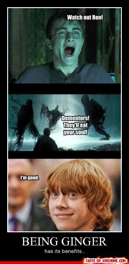 Horrible but hilarious