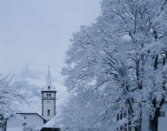 樹氷と教会 グリンデルワルト スイス[01756054986]| 写真素材・ストックフォト・イラスト素材|アマナイメージズ