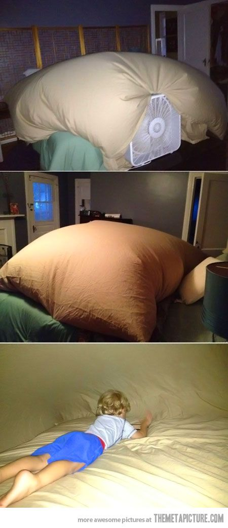 The best way to build a blanket fort…