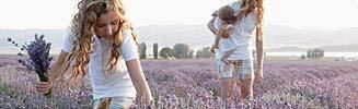 Lavender Bliss Beauty Recipes with Young Living Lavender Essential Oil