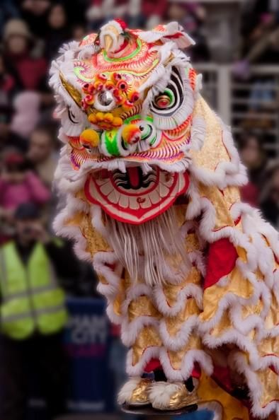 lion dance #chinese new year Http://patricialee.me ...