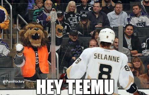 b6fa54078f8d5a560d8466f61b4a4936 kings hockey funny sports the la kings mascot bailey has a little message for teemu selanne,La Kings Memes