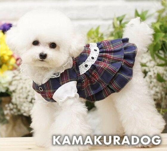 楽天市場 犬の服 ショートケープ 鎌倉dog2号店 犬の服 犬 可愛い犬