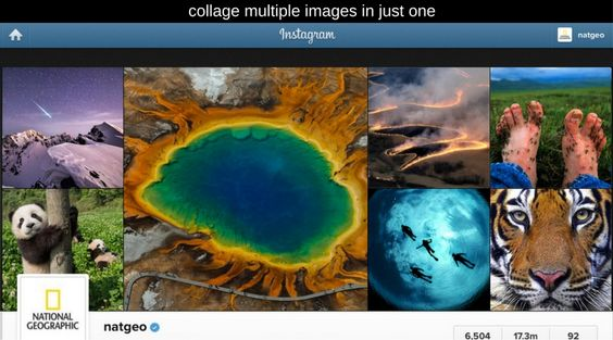 collage multiple images