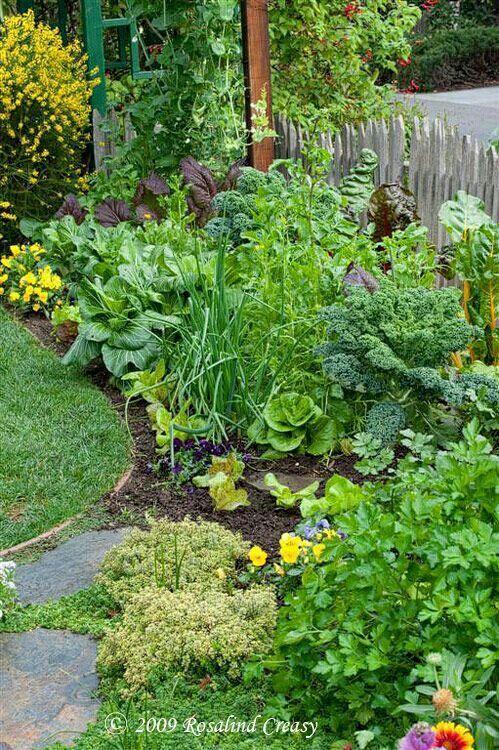 Huerto en jardín