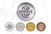 FUJI SPRINT CUP ロゴデザイン(2010〜2013)