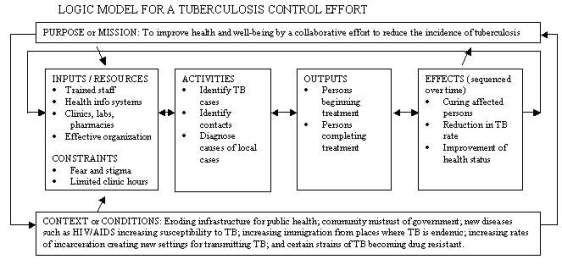 5 Blank Logic Model Templates Theory Of Change Program