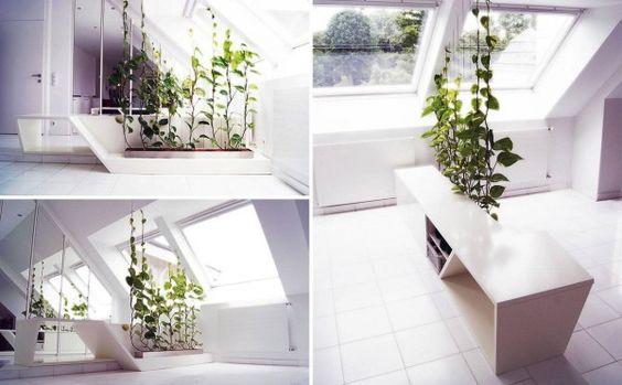 Verwendung von Pflanzen als Raumteiler ist eine besonders kreative und schöne Lösung für die Raumteiler Thema.  Diese Reben klettern Seilen Innen Dschungel, trennt auch Räume zu schaffen.