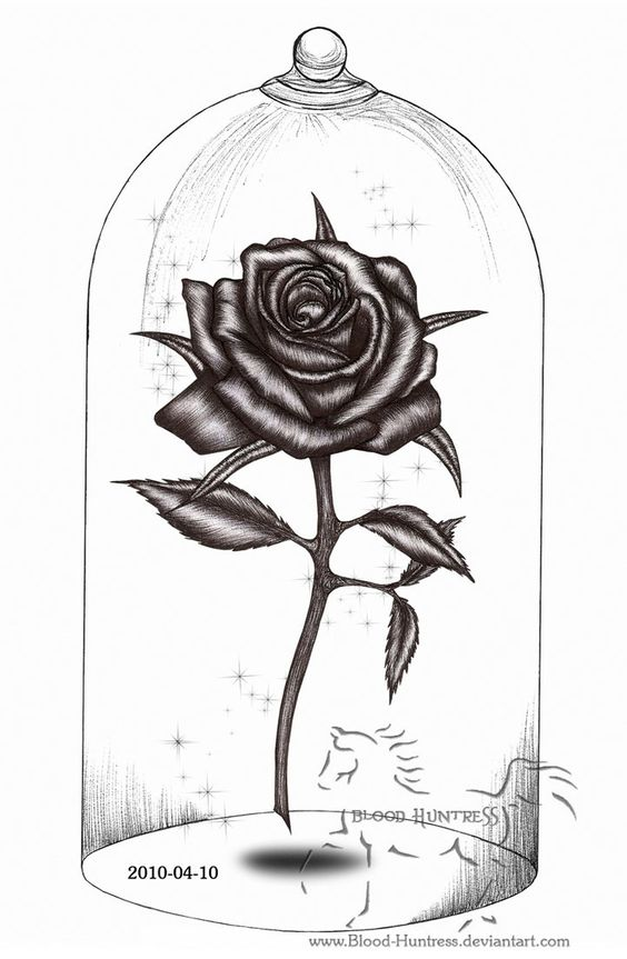 Rose Drawings | Rose Pen Drawing With Glass by ~Blood-Huntress on ...