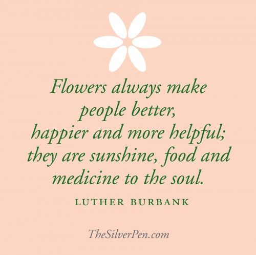 Luther Burbank- 3/7/1849-4/11/1926 ~American botanist, horticulturist and a pioneer in agricultural science.  Creater of the Shasta Daisy, Free stone peach & over 800 variety of plants