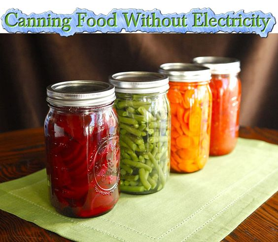 Canning Food Without Electricity  Read HERE ---  http://www.livinggreenandfrugally.com/canning-food-without-electricity/