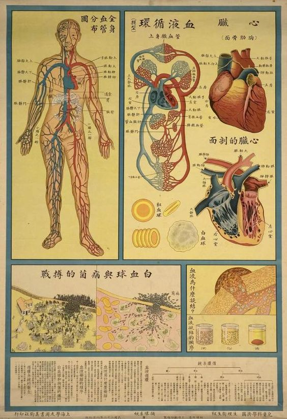 Retro Educational Posters Reimagine The Human Body As A Factory ...