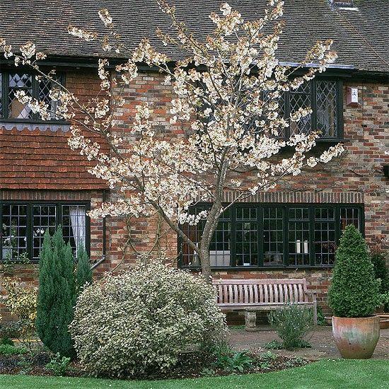 Garten Terrasse Wohnideen Möbel Dekoration Decoration Living Idea Interiors home garden - Japanischer Kirschbaum