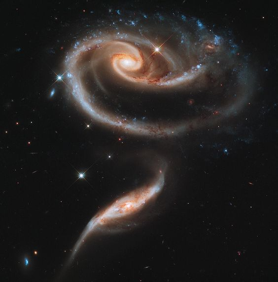 pair of interacting galaxies called arp 273. the larger of the spiral galaxies, known as ugc 1810, has a disk that is distorted into a rose-like shape by the gravitational tidal pull of the companion galaxy below it, known as ugc 1813. ~ credit: nasa, esa, and the hubble heritage team (stsci/aura)
