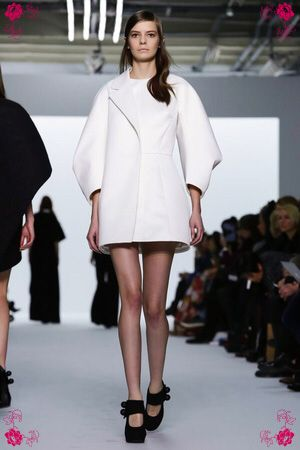 Image from https://fashionlovealex.files.wordpress.com/2015/01/dice-kayek-couture-ss15-paris-3289-1422274808-thumb.jpg.