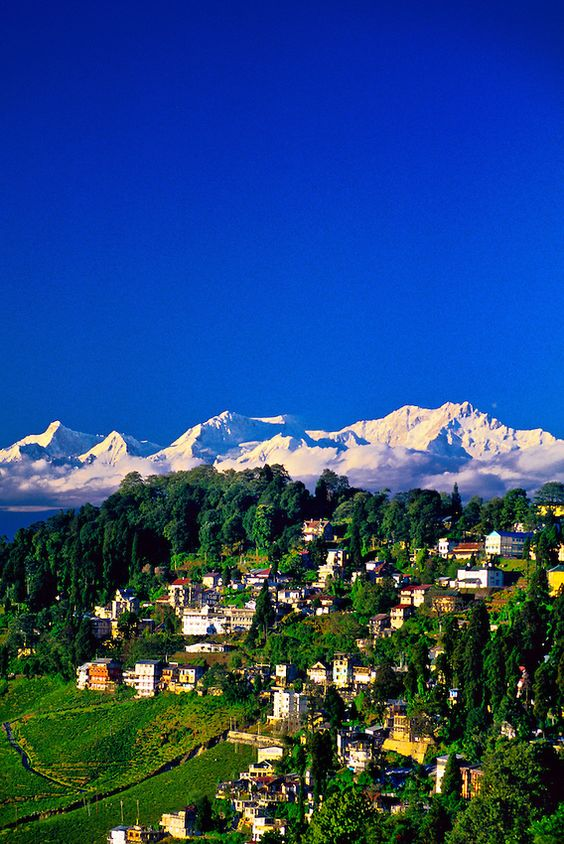 #Darjeeling, West Bengal, India. The famous Darjeeling Hill Country lies immediately south of #Sikkim. Many Sikkim students leave Sikkim to attend college or university in Darjeeling, Siliguri, Kalimpong or even further afield in #Kolkata.