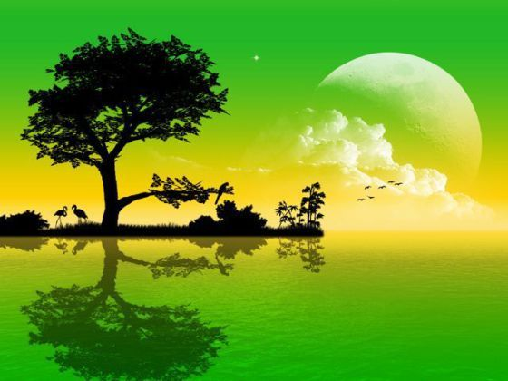 3d Nature Wallpaper Android Download 466099 Nature Wallpaper Hd Nature Wallpapers Best Nature Wallpapers