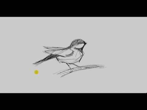 تعليم رسم رسم عصفور Mr Fine Artist تعليم الرسم Youtube Humanoid Sketch Art