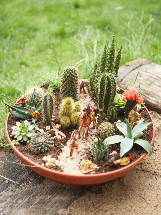 Wild wild west in a cactus dish garden garden backyard for Succulent dish garden designs