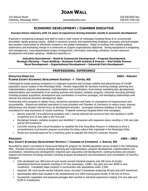 Environmental Analyst Resume Sample - http\/\/resumesdesign - credit analyst resume