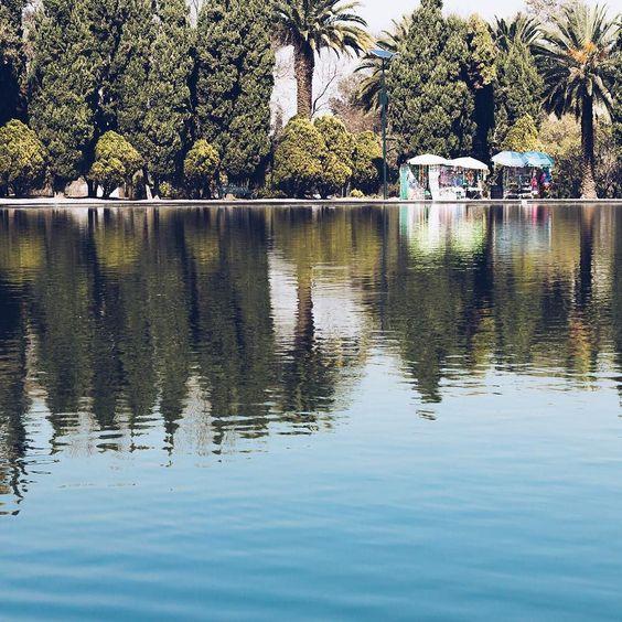Chapultepec Lake.  #beginnersMX #huntgrammexico #travelgram #travel #trip #winter #mexico #mextagram #500px #instadaily #passionpassport #neverstopexploring #igers #igersdf #igtravel #igdaily #Communityfirst #Primerolacomunidad #vscogood #vsco #vscocam #viajero #mexicoandando #mexico_maravilloso #misviajesmexicodesconocido #mexicanoscreativos #talentosmex #mexicodesconocido #fotosdecanonistas #canonmexicana by fotosmentales