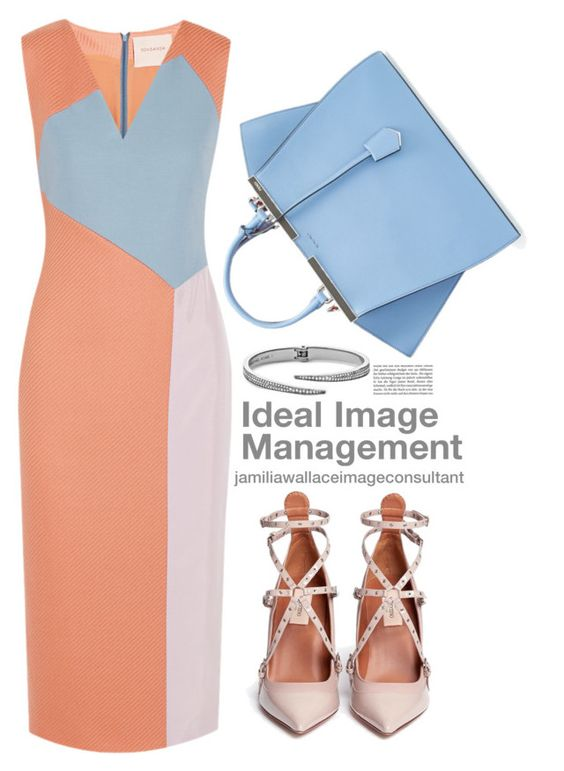 """""""Ideal Image"""" by jamilia-wallace on Polyvore featuring Roksanda, Fendi, Valentino, Michael Kors, women's clothing, women, female, woman, misses and juniors"""