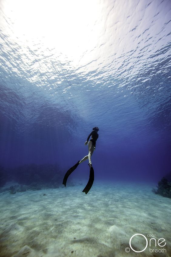 Freediving in the blue waters of Roatan, Honduras.  Photo taken on one breath by Eusebio Saenz de Santamaria. #freediving
