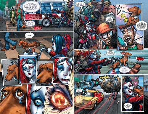 Harley Quinn Rescues Dogs