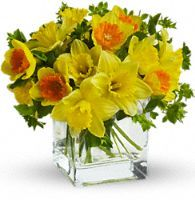 Best & Worst Flowers for Allergy Sufferers | Teleflora: