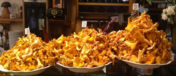 Mushrooms experience in  San Sebastian, Taste Northern Spain #foodie #traveller
