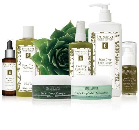 Another Fabulous Product I Am Soooooooo In Love With This Line Of Eminence I Have Purchased Th Gel Wash Skin Care Diy Blackheads Eminence Organic Skin Care