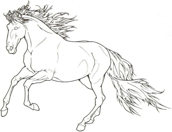 Cantering Horse Stallion by ReQuay.deviantart.com on @deviantART