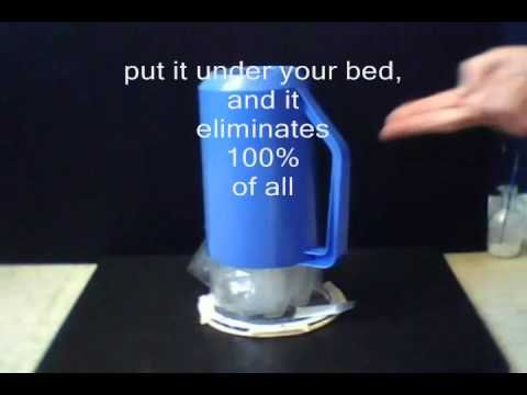 b755d0e26cd8be1c5cea81070a1342ba - How To Get Rid Of Bed Bugs Yahoo Answers