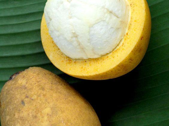 Bacuri - fruta é originária do norte da América do Sul