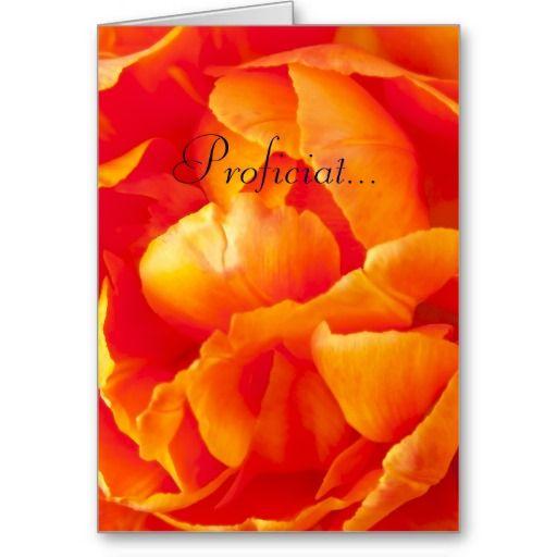 Wenskaart met bloembladeren van een oranje tulp. Tekst is naar keuze te verwijderen dan wel aanpasbaar (inhoud, lettertype, kleur, grootte en locatie). Ook beschikbaar als ansichtkaart en fotokaart.