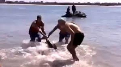 Weirdest nonprofit story of the week: charity fires man after he saves kids from sharks