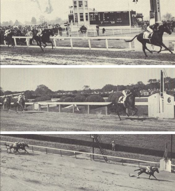 Citation. Derby, Preakness, and Belmont 1948
