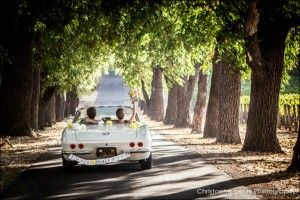 Wedding Photography at a Private Napa Estate Surrounded by Vineyards