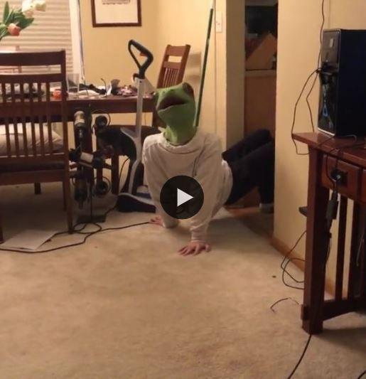 O lagarto está um pouco assustado, porque será?