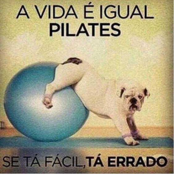 Pilates #pilates #consciência #conexão #gratidão #caminhodomeio #naturalvibe #vidaplena